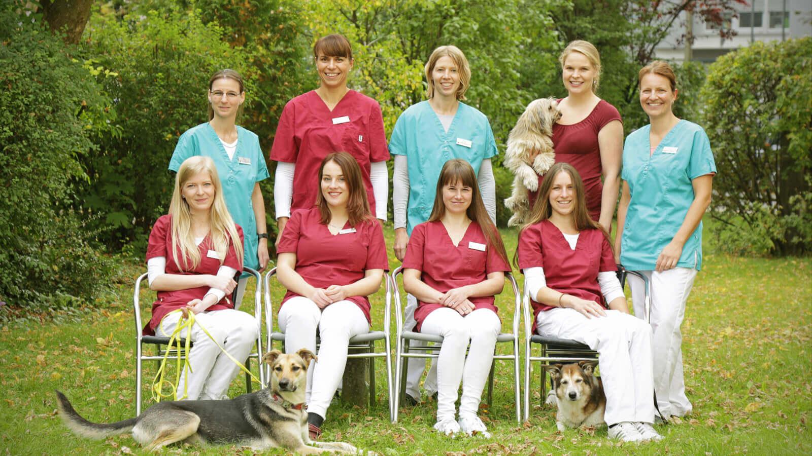 Team Tierklinik