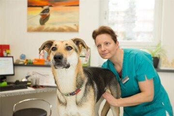 Tierärztliche Grundversorgung
